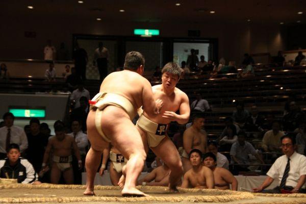 早稲田大学大学相撲部