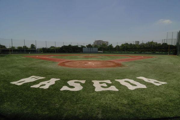 早稲田大学大学野球部