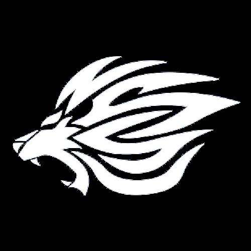 NSSU LIONS 日本体育大学バスケットボール部 ライオンズ